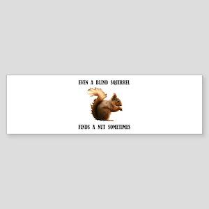 BLIND SQUIRREL Bumper Sticker
