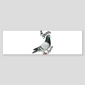 Pigeon Fancier Bumper Sticker