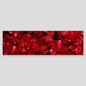 modern romantic red rose petals Bumper Sticker