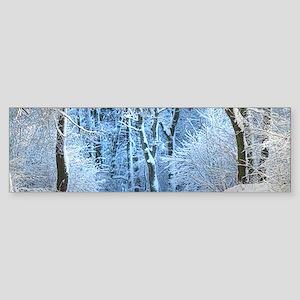 Another Winter Wonderland Bumper Sticker