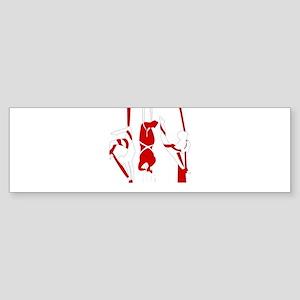 Aerial Silks Bumper Sticker