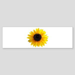 Golden sunflower Sticker (Bumper)
