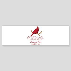 Cardinals Appear Bumper Sticker