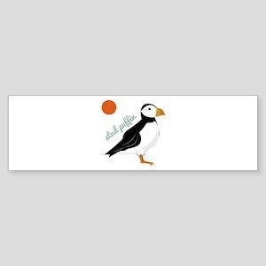 Stud Puffin Bumper Sticker