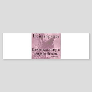 shipwreck2 Bumper Sticker