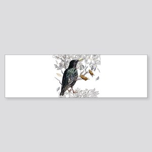 Leaves birds background set Bumper Sticker