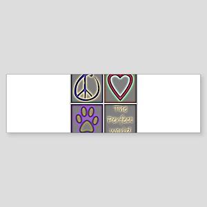 CafepressShopDesigns4-1 Bumper Sticker