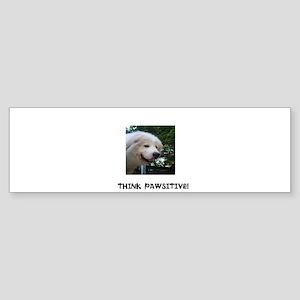 Think Pawsitive! Sticker (Bumper)