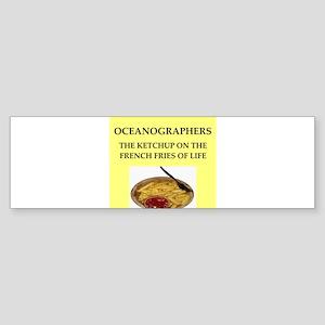 ICEAN Bumper Sticker