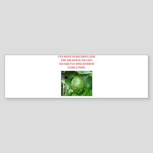 lime Sticker (Bumper)