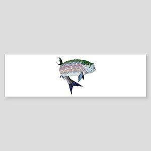 TARPON Bumper Sticker