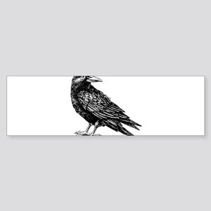 Raven Bumper Sticker
