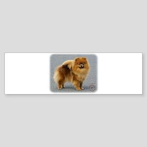 Pomeranian 9R042D-22 Sticker (Bumper)
