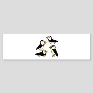 Puffins Bumper Sticker