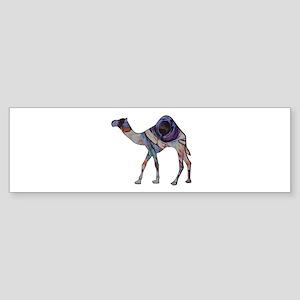 NEW OASIS Bumper Sticker