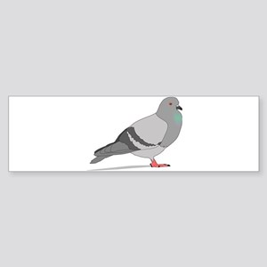 Cartoon Pigeon Bumper Sticker