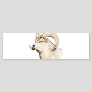 The Ram Bumper Sticker