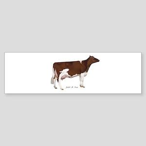 Red and White Holstein Cow Sticker (Bumper)