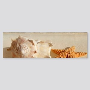 Seashell And Starfish On Beach Bumper Sticker