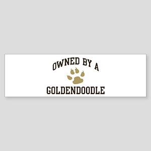 Goldendoodle: Owned Bumper Sticker