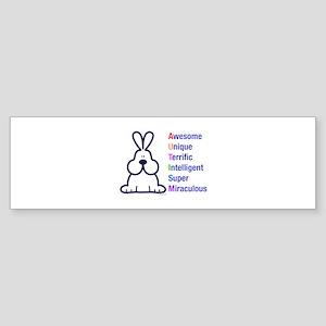 Autism 317 front Bumper Sticker