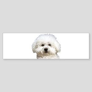 Fifi the Bichon Frise Bumper Sticker