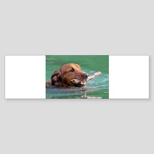 Happy Retriever Dog Bumper Sticker