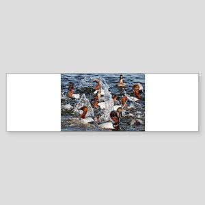 Canvas backs Bumper Sticker