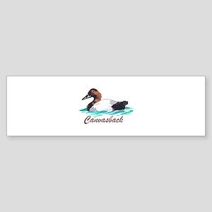 CANVASBACK Bumper Sticker