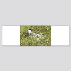 Harlequin Great Dane Meadow Roll Bumper Sticker