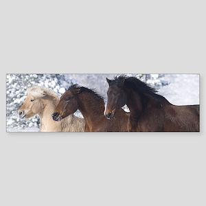 Horses Running In The Snow Bumper Sticker