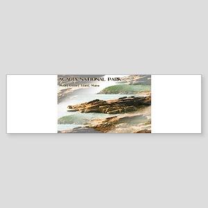 Acadia National Park Coastline Bumper Sticker