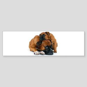 Boxer 3 Sticker (Bumper)