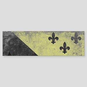 Vintage Grunge Acadian Flag Bumper Sticker
