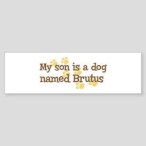 Son named Brutus Bumper Sticker