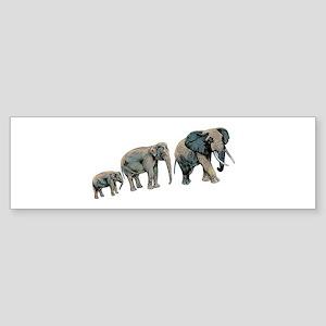 GUIDANCE Bumper Sticker