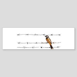 Bird on a Wire Bumper Sticker