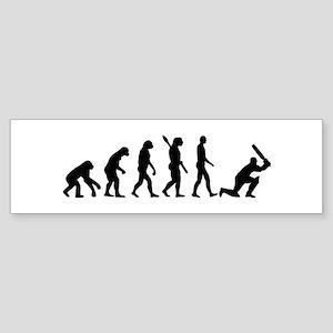 Evolution Cricket Sticker (Bumper)
