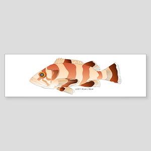 Copper Rockfish fish Sticker (Bumper)