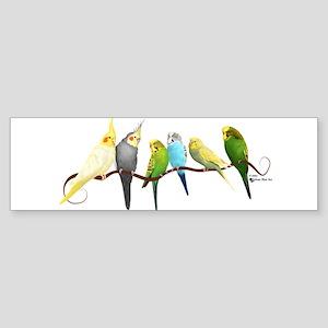Parakeets & Cockatiels Bumper Sticker