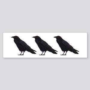 Black Crows Bumper Sticker