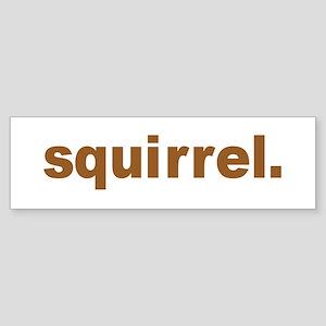 squirrel Bumper Sticker