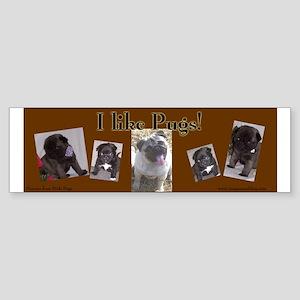 I like Pugs! Bumper sticker