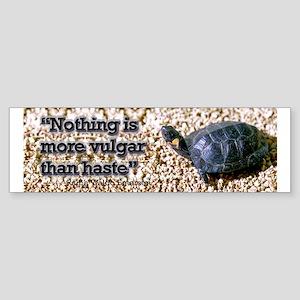 Turtle: Vulgar Haste Bumper Sticker