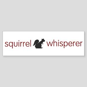 squirrel-light Bumper Sticker