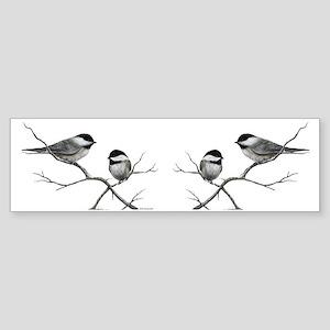 chickadee birds Bumper Sticker