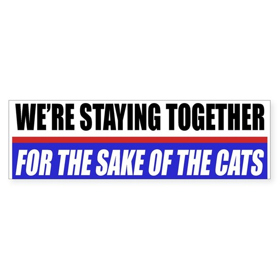 FIN-staying-together-cats