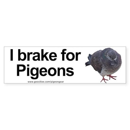 I Brake for Pigeons Bumper Sticker