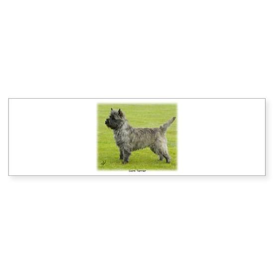 Cairn Terrier 9R071D-129