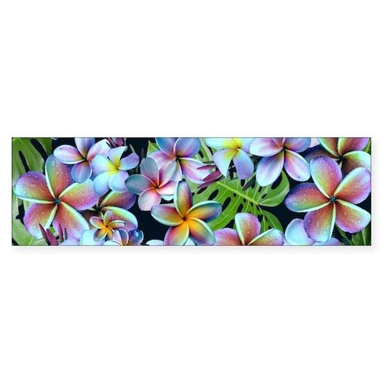 Rainbow Plumeria Dark